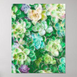 Succulent Garden by Cindy Bendel Poster