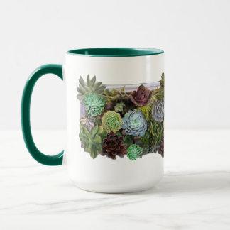 Succulent garden design mug