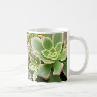 Succulent garden mug