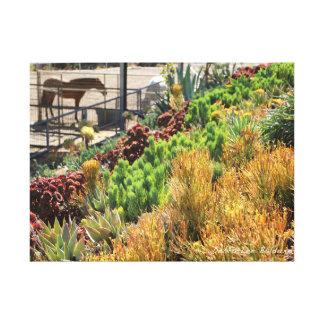 Succulent garden near horse corral canvas print