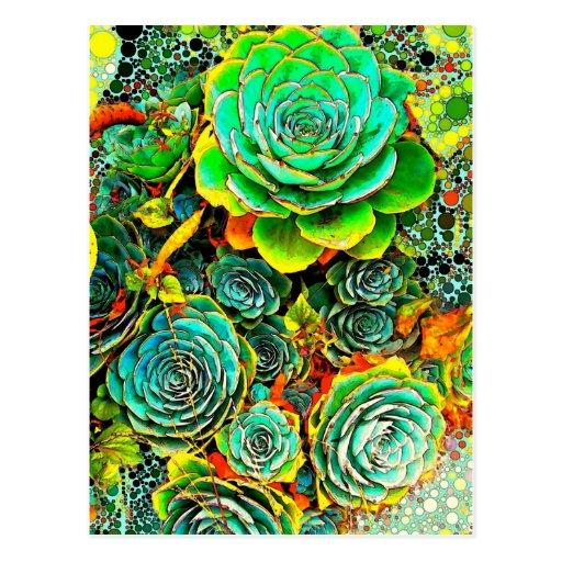 Succulent Garden Pop Art Postcard