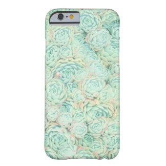 Succulent Garden Print iphone 6/6s case