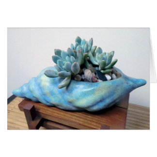 Succulent in Seashell card by The Perfect Plant
