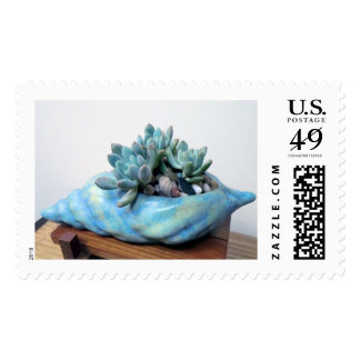 Succulent in Seashell Stamps by The Perfect Plant