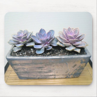 Succulent in Silver by The Perfect Plant Mouse Pad