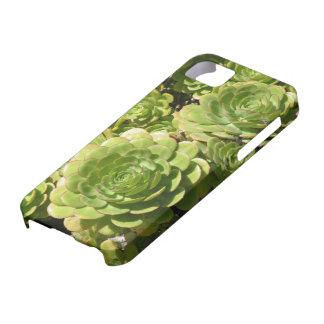 Succulent iPhone 5 Case