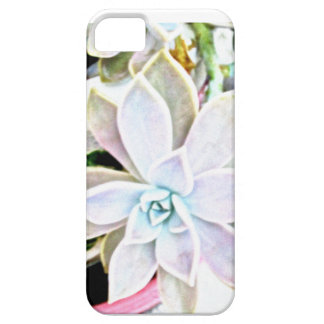 Succulent iPhone 5 Covers