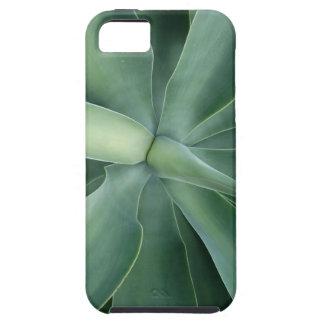 Succulent iPhone SE + 5/5s Case