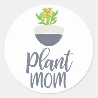 Succulent Kalanchoe Plant Mom Pattern Classic Round Sticker