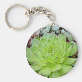 Succulent Key Chain