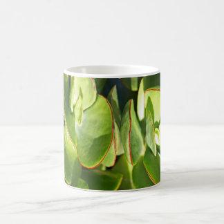 Succulent Leaves Classic White Coffee Mug