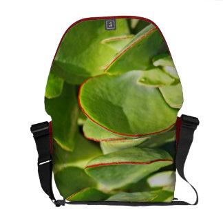 Succulent Leaves Messanger Bag