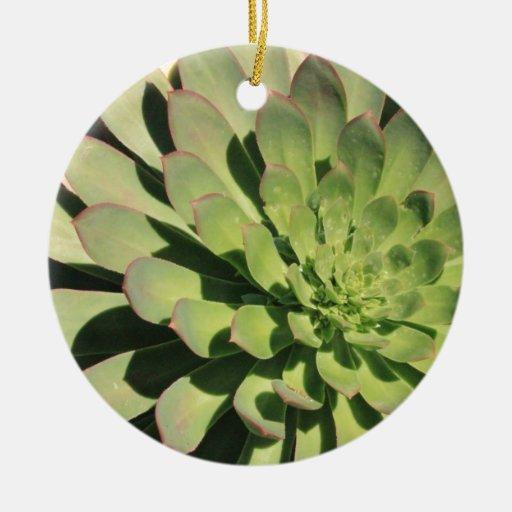 Succulent Love 2 Ceramic Ornament