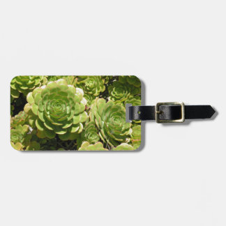 Succulent Bag Tag