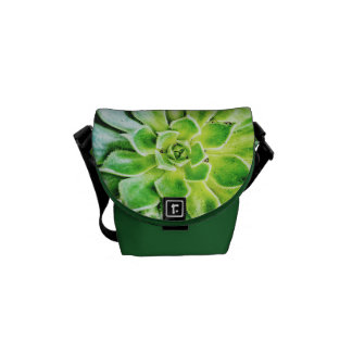 Succulent Mini Messenger Bag