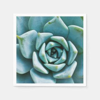 Succulent Napkin