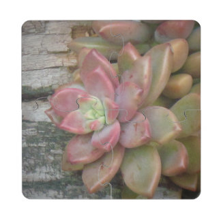 Succulent On Driftwood Puzzle Coaster