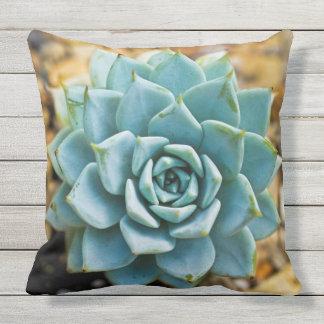 Succulent Outdoor Pillow