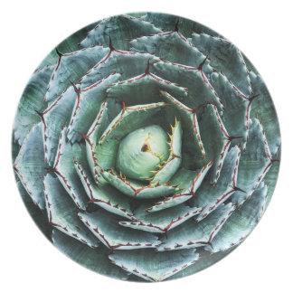 Succulent Photographic Melamine Plate