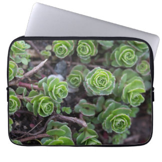 Succulent Photography Computer Sleeve