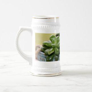 Succulent Plant Anacampseros Rufescens Sunrise 18 Oz Beer Stein