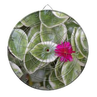succulent plant dart board