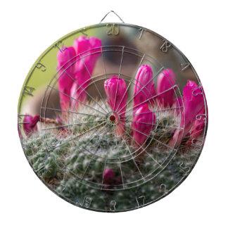 succulent plant dartboards