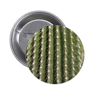 succulent plant in the garden pinback button