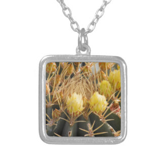 succulent plant in the garden silver plated necklace