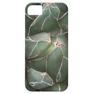 Succulent Plant Photo iPhone SE + iPhone 5/5S iPhone SE/5/5s Case