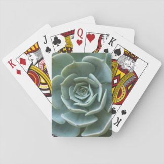 Succulent Plant Playing Cards
