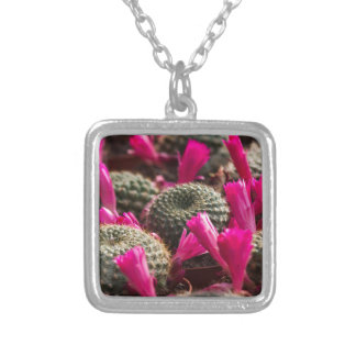 succulent plant silver plated necklace