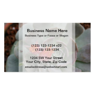 Succulent plant with orange flower business card