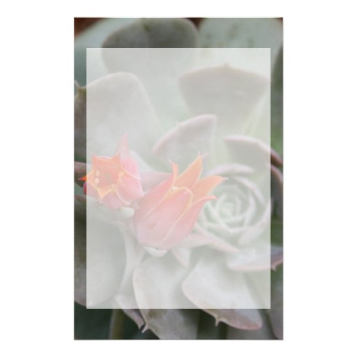 Succulent plant with orange flower stationery