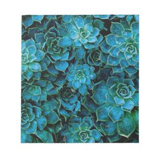 Succulent Plants Notepad