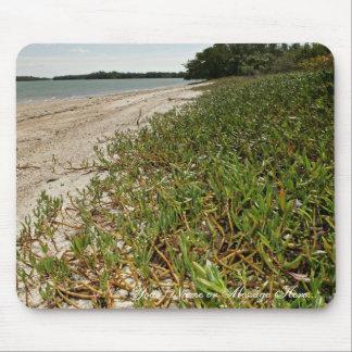 Succulent plants on beach mouse pad