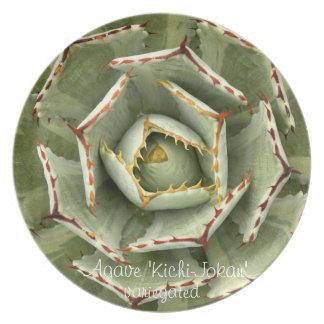 Succulent plate: Agave 'Kichi-Jokan' variegated Melamine Plate