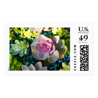 Succulent Pond by Amy Vangsgard Postage Stamp