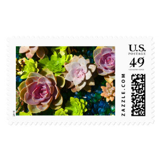 Succulent Pond by Amy Vangsgard Postage Stamps