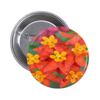 Succulent Red and Yellow Flower 2 Pin