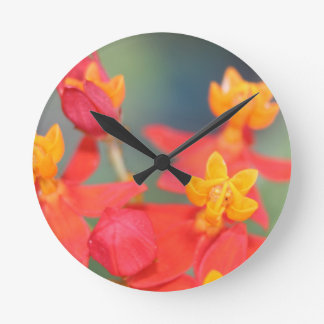Succulent Red and Yellow Flower Round Clock