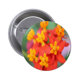 Succulent Red and Yellow Flower III Pinback Buttons