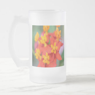 Succulent Red and Yellow Flower III Frosted Glass Beer Mug