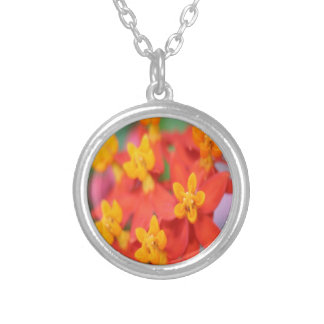 Succulent Red and Yellow Flower III Silver Plated Necklace
