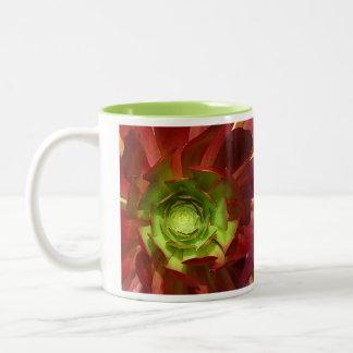 Succulent rojo y verde taza