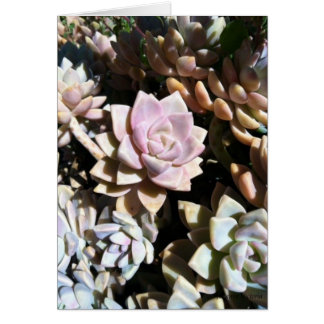 Succulent Sea Stationery Note Card