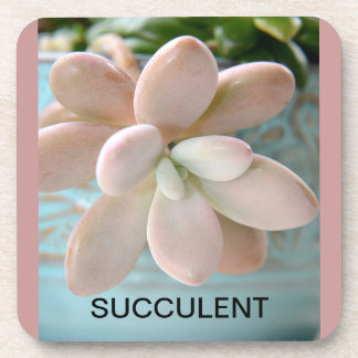 Succulent Sedum Pink Jelly Bean Plant Beverage Coaster