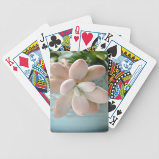 Succulent Sedum Pink Jelly Bean Plant Bicycle Playing Cards