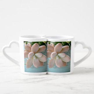 Succulent Sedum Pink Jelly Bean Plant Coffee Mug Set