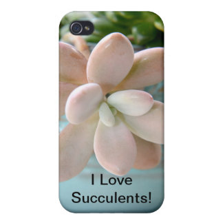 Succulent Sedum Pink Jelly Bean Plant iPhone 4 Cover